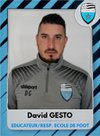 David Gesto