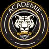 logo du club BAGNEUX FUTSAL ACADEMIE
