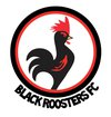 logo du club Black Roosters FC