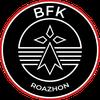 logo du club BREIZH FOBAL KLUB