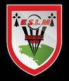 logo du club ENTENTE SPORTIVE LARRÉ MOLAC