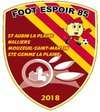 logo du club FOOT ESPOIR 85