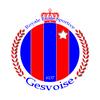 logo du club Royale Etoile Sportive GESVOISE