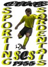 logo du club SPORTING CLUB SARDENTAIS