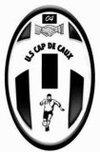 logo du club Union Sportive Cap de Caux