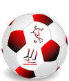 logo du club Union Sportive Saint Vaury