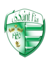 logo du club UNION SPORTIVE SAINT FIEL