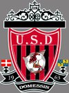 logo du club US DOMESSIN