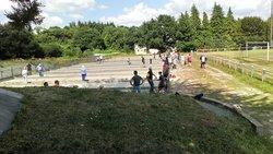 24 équipes au concours de boules bretonnes