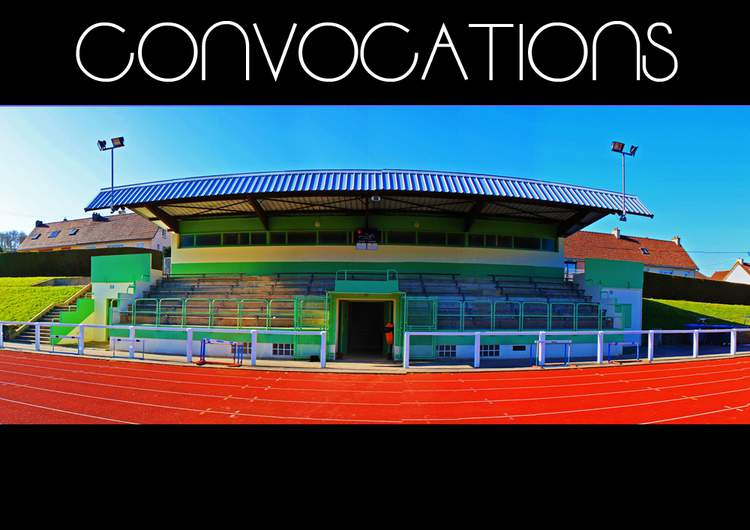 CONVOCATIONS