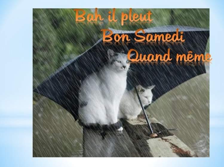 """Résultat de recherche d'images pour """"bon samedi sous la pluie"""""""