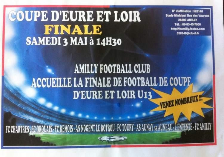 COUPE U13 : LA FINALE C'EST SAMEDI A AMILLY ...