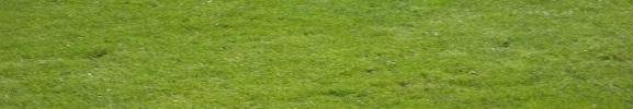 ALBERT SPORTS FOOTBALL : site officiel du club de foot de ALBERT - footeo