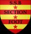 logo du club  Bonnat Section Foot