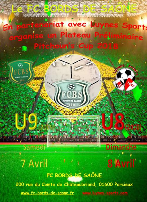 Aff_prelim_Pitchounes_Cup_2018.png