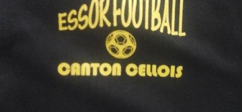 Essor Football Canton Cellois : site officiel du club de foot de CELLES SUR BELLE - footeo