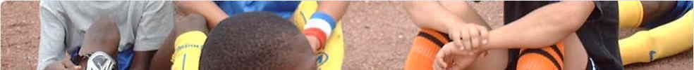 Football Club de Boissy : site officiel du club de foot de boissy st leger - footeo