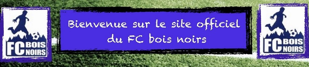 Football Club des Bois Noirs : site officiel du club de foot de ST ROMAIN D URFE - footeo