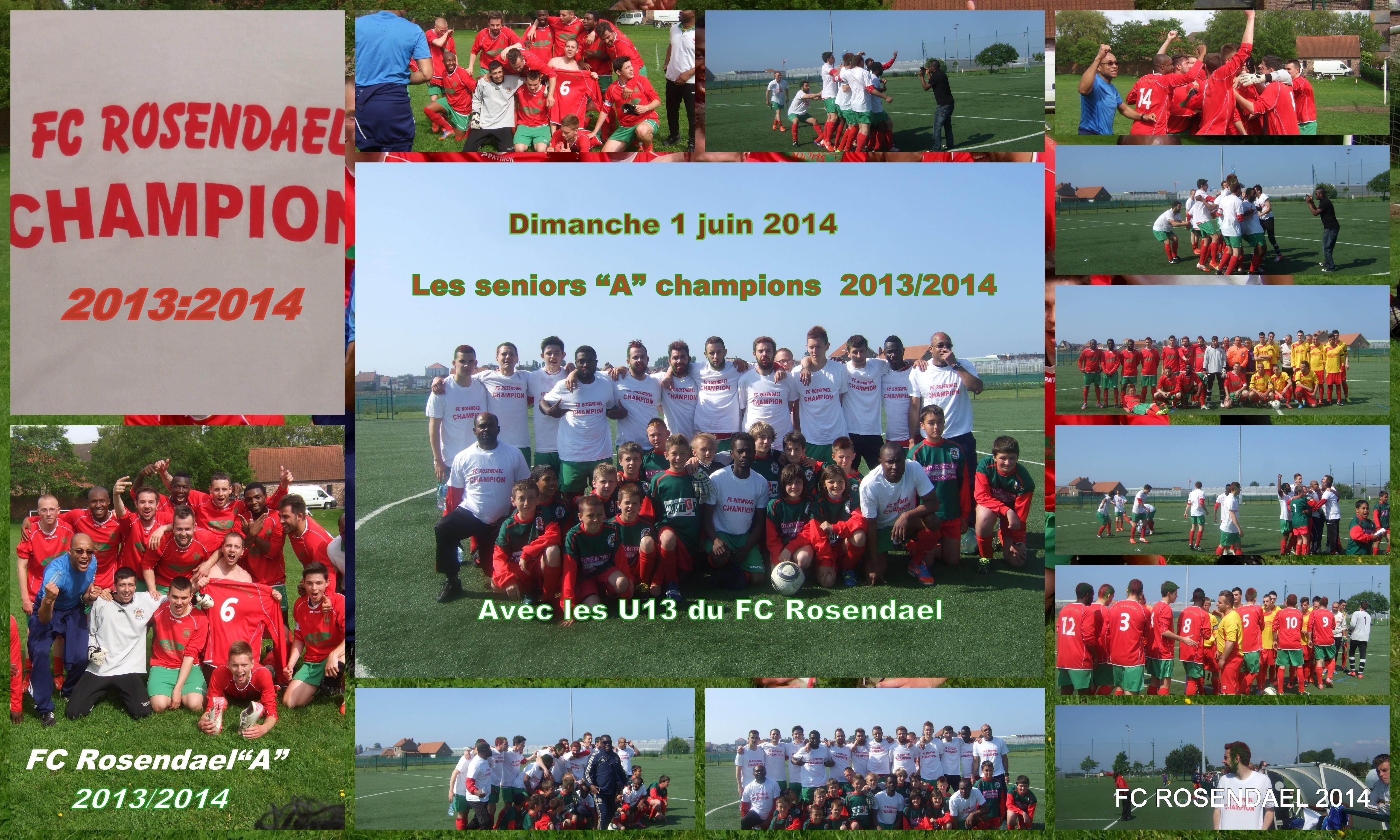 champion 2013/2014