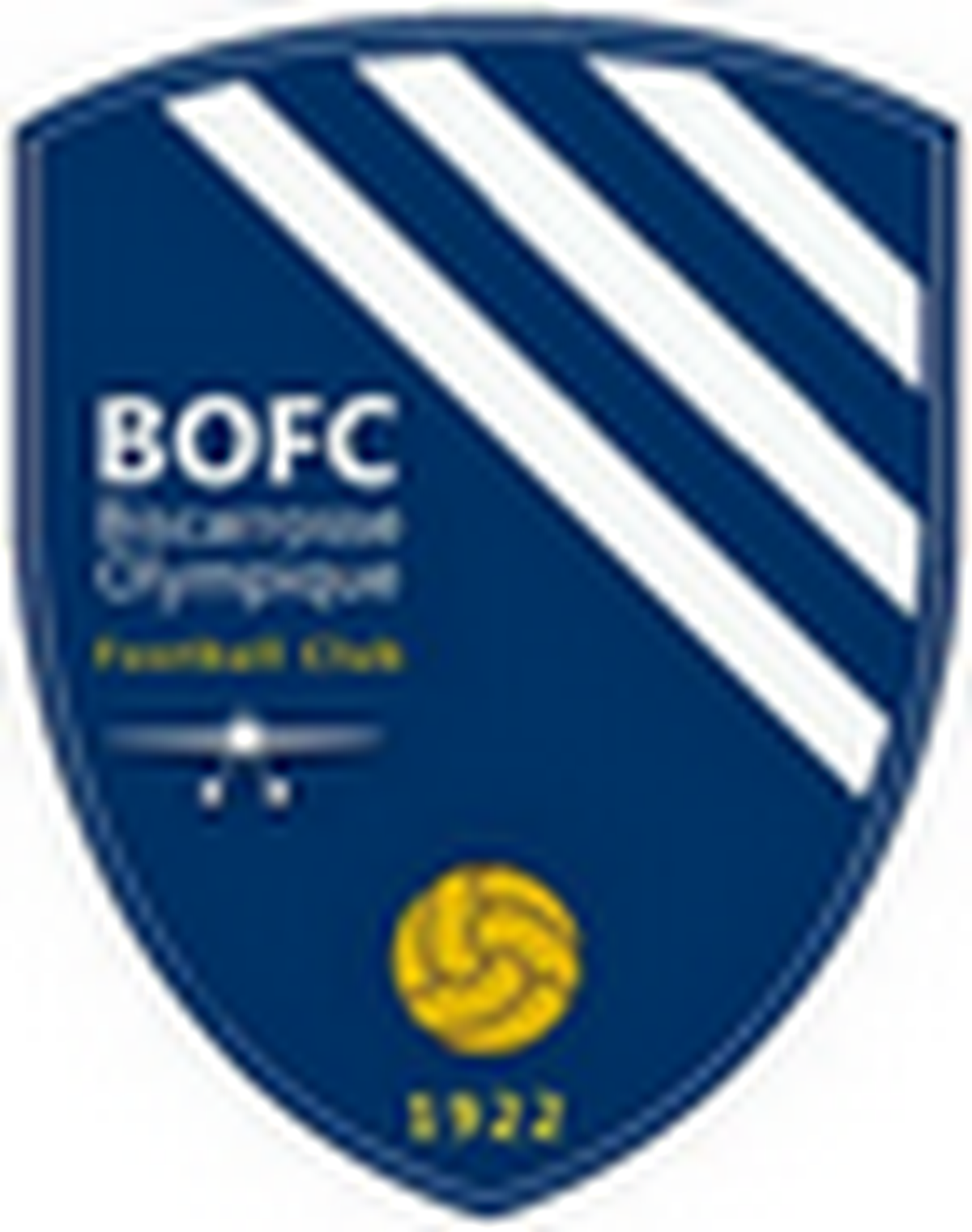 logo du club Biscarrosse Olympique Football Club