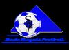 Stade Blayais football
