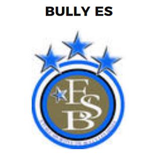 Logo Bully.png