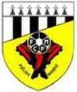 U11 - FC Plélan/Maxent