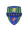 logo du club ENTENTE FEIGNIES AULNOYE FOOTBALL CLUB
