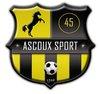 logo du club Ascoux sports football