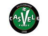 logo du club ASVEL FOOTBALL   Villeurbanne