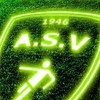 logo du club A.S. VILLENEUVE SUR ALLIER