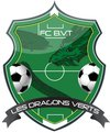 logo du club Dragons Verts FCBVT