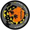 logo du club FUTSAL TENNIS BALLON YONNAIS