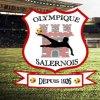 logo du club OLYMPIQUE SALERNOIS