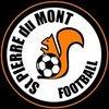 logo du club SPORTING CLUB SAINT PIERRE DU MONT FOOTBALL