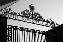 you'll never walk alone !