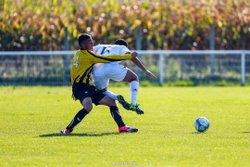 Ludovic Belot