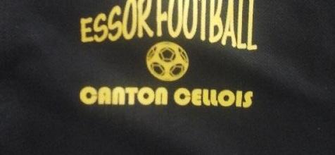 Essor Football Canton Cellois : site officiel du club de foot de CELLES SUR BELLE - footeo