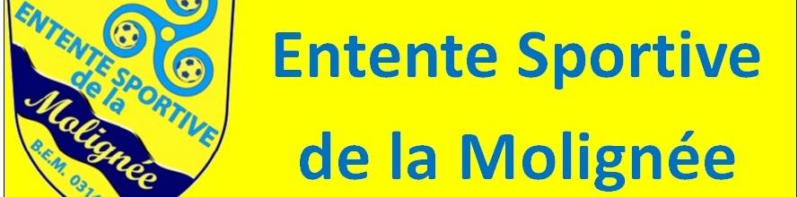 ESMolignée-jeunes : site officiel du club de foot de Mettet - footeo