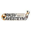 Avesteyn