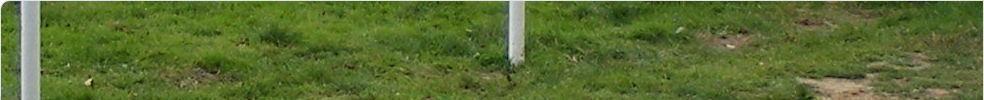 espérance sportive maisoncelles : site officiel du club de foot de MAISONCELLES DU MAINE - footeo