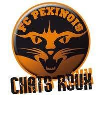 FC PEXINOIS