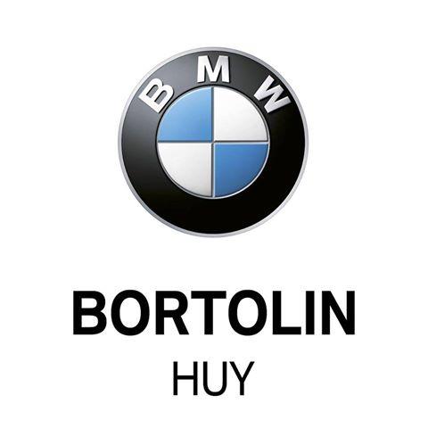 Logo_BMW_Bortolin.jpg