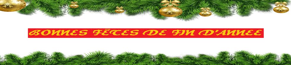 U15 Olympique Adamois : site officiel du club de foot de L ISLE ADAM - footeo